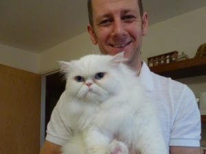 Cat Grooming Acton – Lulu