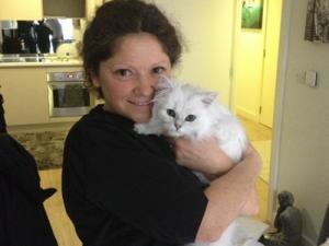 Mobile cat grooming Greenwich: Jasper