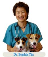 Interview Dr Sophia Yin