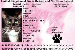 cat passports and cat travel information