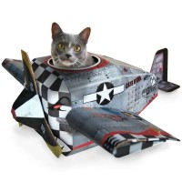 Flying BA with a cat