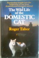 cat behaviour and problems