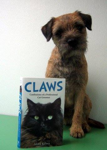 Dog With Claws Confessions Of A Cat Groomer Catnips